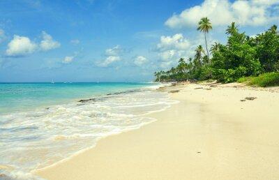 Fototapete Tropischer Sandstrand in Karibisches Meer, Dominikanische Republik. Sommer-Strand-Paradies. Insel Strand mit blauem Meerwasser. Seeschaum am Strand. Paradies der Seestrand. Leeren Meer Strand.