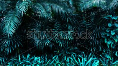 Fototapete tropisches Blattwaldglühen im dunklen Hintergrund. Hoher Kontrast.