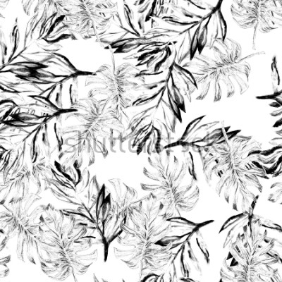 Fototapete Tropisches monstera Muster des nahtlosen Aquarells. Handgemaltes Aquarell Illustration Monster. Tropisches nahtloses botanisches Aquarell exotisches Blumenmuster. Palmenblätter. Schwarzweiss-Regenwald