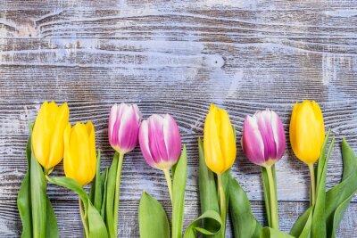Fototapete Tulip Blumen auf hölzernen Hintergrund