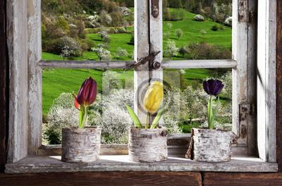 Fototapete Tulpen am Fenster mit Blick in die Landschaft