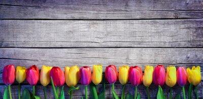 Fototapete Tulpen in einer Reihe auf dem Vintage Plank - Spring Background