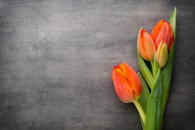 Fototapete Tulpen, orange auf dem grauen Hintergrund.