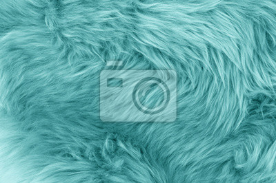 Fototapete Türkis blau Schaffell Teppich Hintergrund