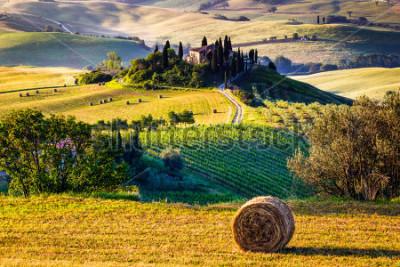 Fototapete Tuscany, Italian Countryside, landscape