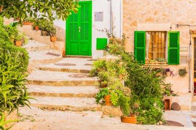 Fototapete Typische Pflanzendekoration in einem alten rustikalen mediterranen Dorf