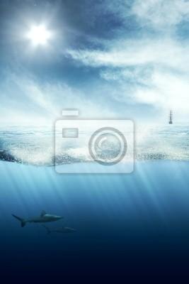 Über und unter Wasser