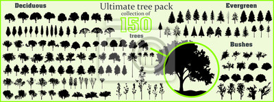 Fototapete Ultimate tree collection, 150 detailed, different tree vectors