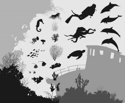 Fototapete unter Wasser