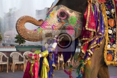 Unterziehen Festival - Jaipur