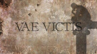 Fototapete Vae Victis. Latein Phrase für Wehe dem Besiegten