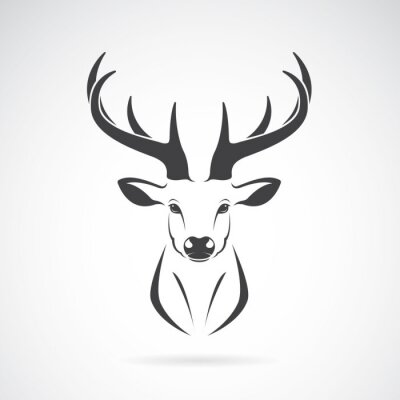 Fototapete Vector Bild eines Hirsch Kopf-Design auf weißem Hintergrund