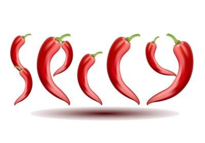 Vector Chili Pepper auf weißem Hintergrund