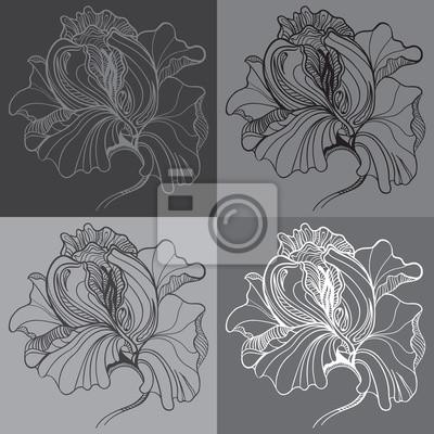 Vector Druck mit vier grafische monochrome Blumen
