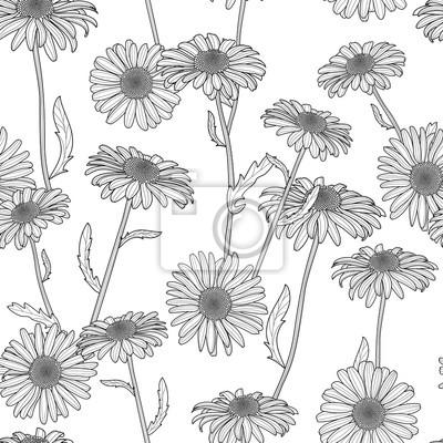 Vector floral nahtlose muster. schwarz-weiß-hintergrund mit hand ...