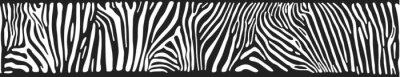 Fototapete Vector Hintergrund mit Zebrafell