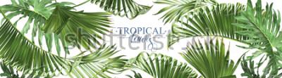 Fototapete Vector horizontale tropische Blattfahnen auf weißem Hintergrund. Exotischer botanischer Entwurf für Kosmetik, Badekurort, Parfüm, Gesundheitspflegeprodukte, Aroma, Hochzeitseinladung. Am besten als We