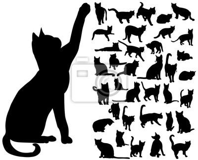 Fototapete vector isolated silhouette cat set