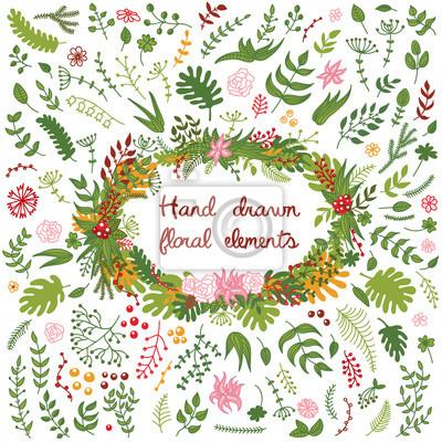 Vector Reihe von Hand gezeichnet floral Elemente - Blumen, Zweige, Blätter.