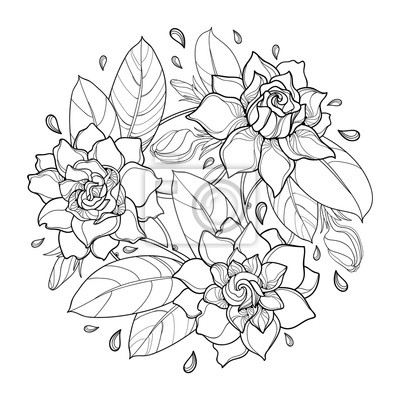 Vector ringsum blumenstrauß mit entwurf gardenia-blume, -knospe ...