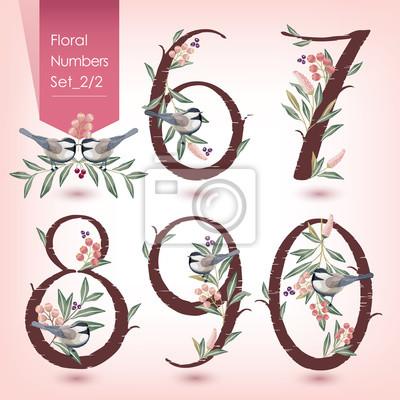 Fototapete Vektor Illustration Der Floralen Zahlen Auflistung. Eine Reihe  Von Blumen Und Zahlen