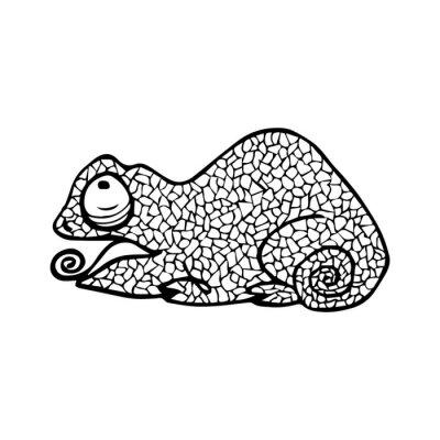 cameleon malvorlage  coloring and malvorlagan