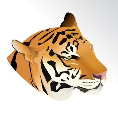 Fototapete Vektor-Illustration von Tiger-Kopf Porträt isoliert auf weißem Hintergrund.