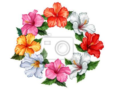 Vektor realistische hibiskus-vorlage isoliert fototapete ...
