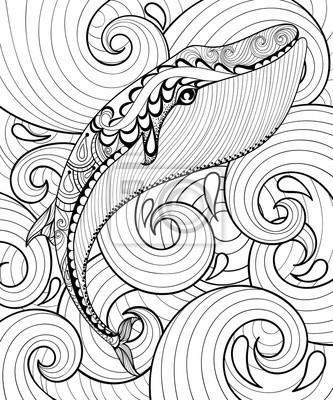 Vektor zentangle wal im meer, druck für erwachsene malvorlage