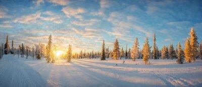 Fototapete Verschneite Landschaft bei Sonnenuntergang, gefroren Bäume im Winter in Saariselka, Lappland, Finnland