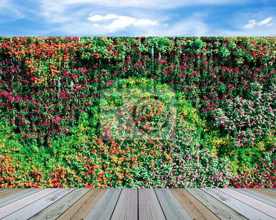Vertikale Wand Garten Mit Blumen Fototapete Fototapeten Schöne