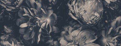 Fototapete Vintage bouquet of peonies. Floristic decoration. Floral background. Black and white baroque old fashiones style image. Natural flowers pattern wallpaper or greeting card
