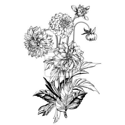 Vintage Elegante Blumen Schwarz Weiss Vektor Illustration