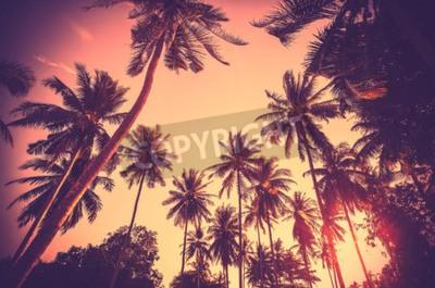 Fototapete Vintage getönten Urlaub Hintergrund aus Palme Silhouetten bei Sonnenuntergang gemacht.