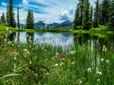 Fototapete vista of Paridise Lake in Paridise Basin near Crested Butte Colorado