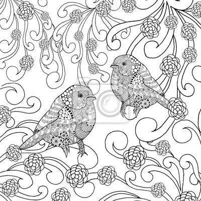 Vögel Ausmalbilder Fototapete Fototapeten Flügel Färben