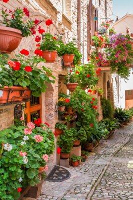 Fototapete Voll von der Blumenveranda in der kleinen Stadt in Italien, Umbrien