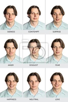 Vollständiges diagramm der universellen menschlichen mikroausdrücke ...