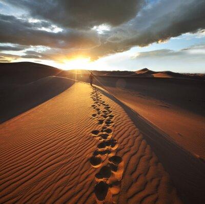 Fototapete Wanderung in der Wüste