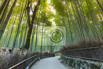 Wanderweg In Bambuswald Arashiyama Kyoto Japan Fototapete