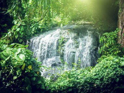 Fototapete Wasserfall im Dschungel der Seychellen, Mahe Insel