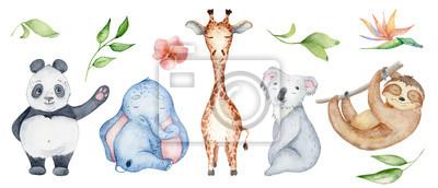 Fototapete Watercolor animals character collection. Panda, sloth, giraffe, koala, elephant