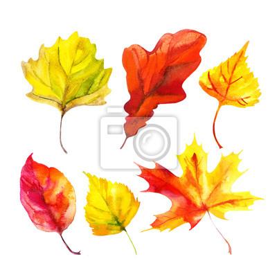 Fototapete Watercolor autumn leaf set