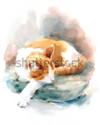 Fototapete Watercolor Cat Sleeping on the Pillow Hand Painted Pet Portrait Animal Illustration