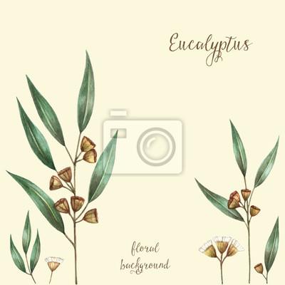 Watercolor eucalyptus leaves