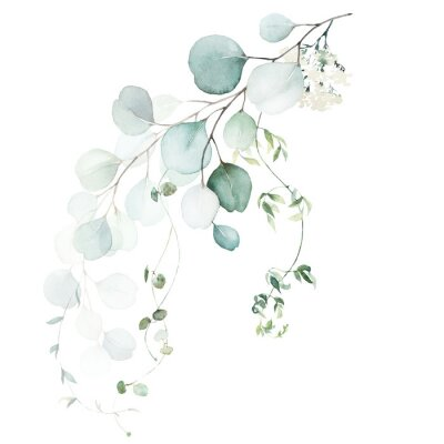Fototapete Watercolor floral illustration bouquet - green leaf branch collection, for wedding stationary, greetings, wallpapers, fashion, background. Eucalyptus, olive, green leaves, etc.