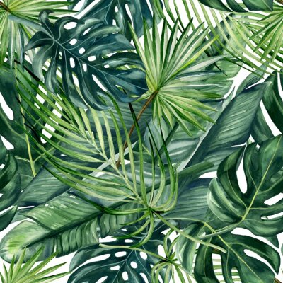 Fototapete Watercolor hand painted seamless pattern with green tropical leaves of monstera, banana tree and palm on white  background.