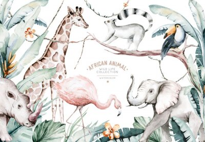 Fototapete Watercolor illustration of African Animals: lemur, flamingo and giraffe, toucan and rhipo, rhino and elephant isolated white background. Safari savannah animals