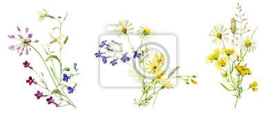 Fototapete Watercolor multicolored bouquets of wild flowers