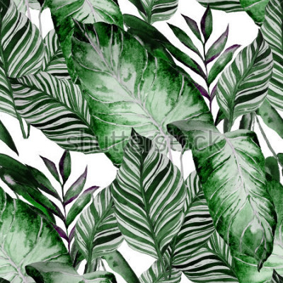 Fototapete Watercolor seamless pattern with tropical leaves: palms, monstera, passion fruit. Beautiful allover print with hand drawn exotic plants. Swimwear botanical design.